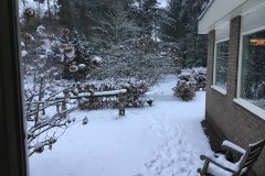 wintersfeer-tuin